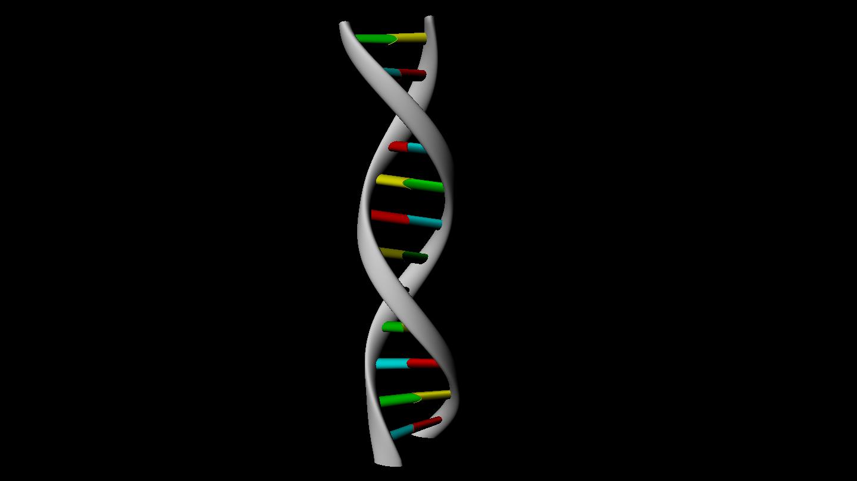 3D DNA strand rendering in MAYA | av_designs